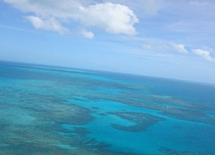 グリーン島23.jpg