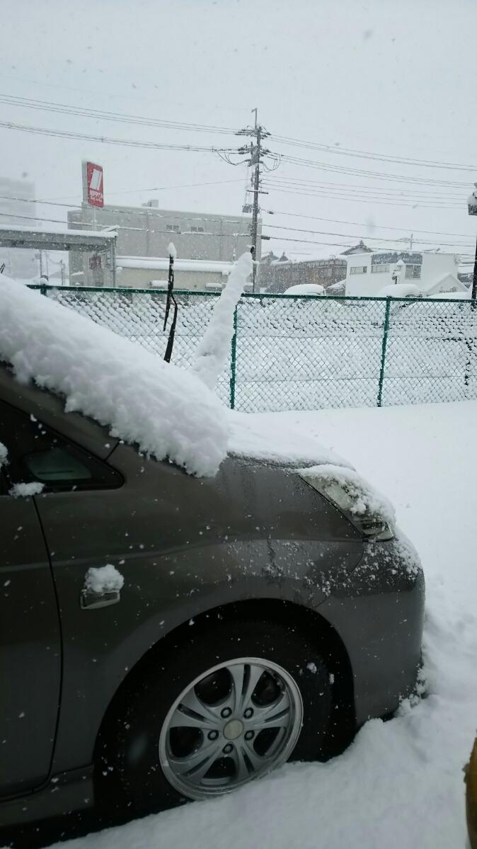 雪DSC_3529.JPG